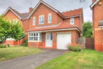 Detached house for sale in Bradman Drive...