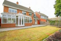 4 bed Detached property in Hermitage Park...