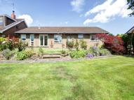 3 bed Detached Bungalow for sale in The Willows, Washington...