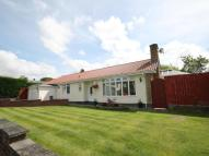 Detached Bungalow for sale in Campus Martius...