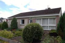 Bungalow for sale in 13 Dukehaugh, Peebles...
