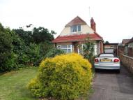 3 bed Detached Bungalow in Hill Rise, Brands Hill...