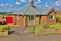 3 bed Detached Bungalow in Oberon Crescent...