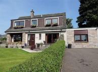 Detached house for sale in Parkview Honeyfield...