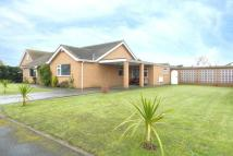 Detached Bungalow in Sandilands Close...