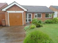 Detached Bungalow in Dovecote Drive, Wollaton...