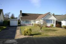 Bungalow to rent in Colemere Gardens...