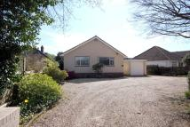 Bungalow to rent in Cull Lane, New Milton...