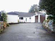 Bungalow for sale in Buckfastleigh