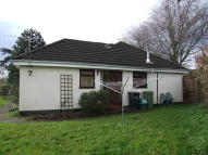 1 bed Semi-Detached Bungalow to rent in Ashburton