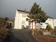 Sycamore Road South semi detached house to rent