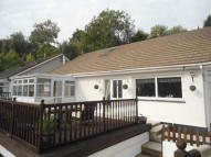 3 bed Detached Bungalow in Cwmavon Road, NP4