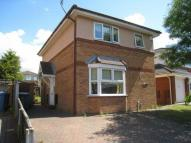 property to rent in Cottonwood, Aigburth...