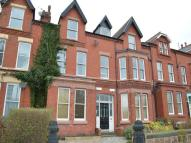 Ullet Road Flat to rent