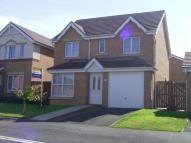 4 bed property to rent in Carlton Moor Crescent...