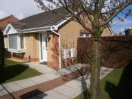2 bed Semi-Detached Bungalow in Alpine Way, Norton...