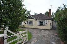 Detached Bungalow to rent in The Chase, Ickenham...