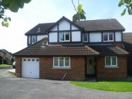 Detached property in Rumble Dene, Pewsham...