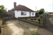 Detached Bungalow for sale in Coast Road, Pevensey Bay...