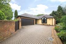 3 bed house for sale in The Warren, Radlett...