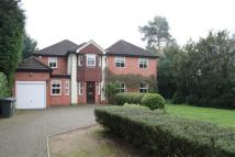 5 bed house in Watford Road, Radlett...