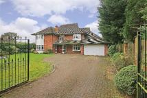 5 bed house for sale in The Avenue, Radlett...