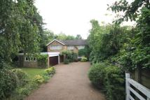 property to rent in Newlands Avenue, Radlett