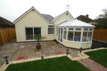 Detached Bungalow for sale in Flax Lane, Glemsford...