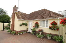 Detached Bungalow for sale in RADIATOR ROAD, Sudbury...