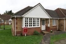 2 bedroom Semi-Detached Bungalow for sale in Banham Drive, Sudbury...