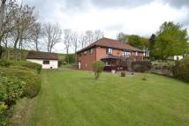 Detached home for sale in Knitsley Lane, Consett, ...