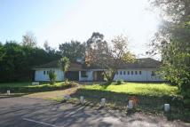 4 bed Bungalow for sale in Albourne Road...