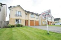 4 bed Detached property for sale in Joseph Cumming Gardens...