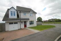 4 bed Detached house in Breichwater Place...