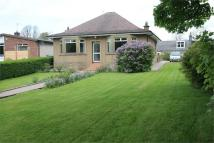 3 bed Detached Bungalow in Allan Brae...
