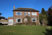 Detached property for sale in Homedale, Prudhoe, NE42