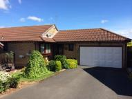 Detached Bungalow in Greener Court, Prudhoe...