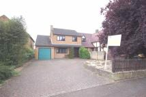 3 bed Detached home in Ise View Road, Desborough