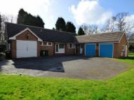 Detached Bungalow for sale in Farrer Lane, Oulton...