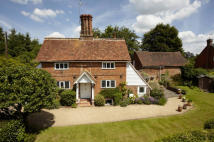 Cottage for sale in Westcott, Surrey