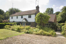 3 bed semi detached house for sale in Holmbury St Mary, Surrey