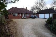 Bungalow in Prestwood Road West...