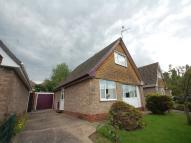 Detached Bungalow for sale in Valley Drive, Newthorpe...