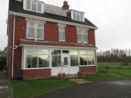 Detached house to rent in Main Road, Bosham