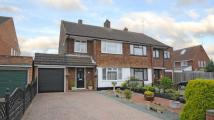3 bedroom semi detached house in Rowan Drive, Woodley...
