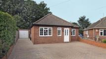 Bungalow in Woodwaye, Woodley...