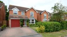 4 bed Detached house in St. Johns Close, Woodley...