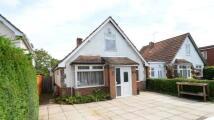 Bungalow for sale in Loddon Bridge Road...