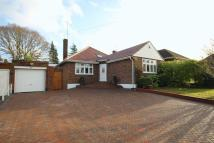 Bungalow in Cuckoo Hill, PINNER