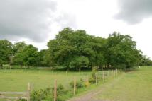 Equestrian Facility property in Twyford Road...